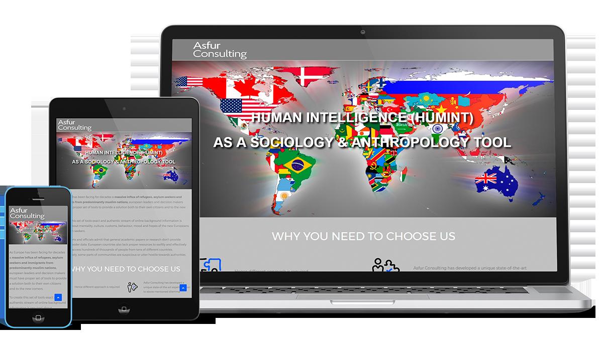 "Разработка сайта визитки компании ""Asfur Consulting"" - 3DVision.com.ua"